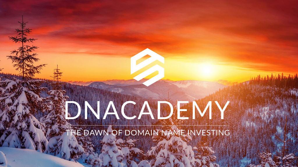 domain-name-investing